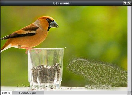 Инструмент Точечная коррекция в Pixlr Editor